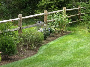 Locust Rail Fence in Lynnfield MA