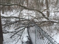 Winter Maintenance: How to Weatherproof Your Fence