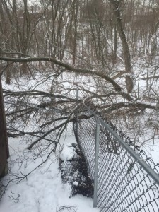 Scenes like these (from one of our customer's yards) are all too common in the winter months.